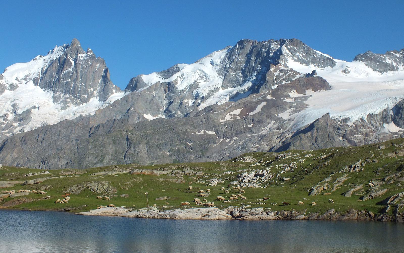 plateau-d-emparis-hautes-alpes-meije-Lombard-Vasina